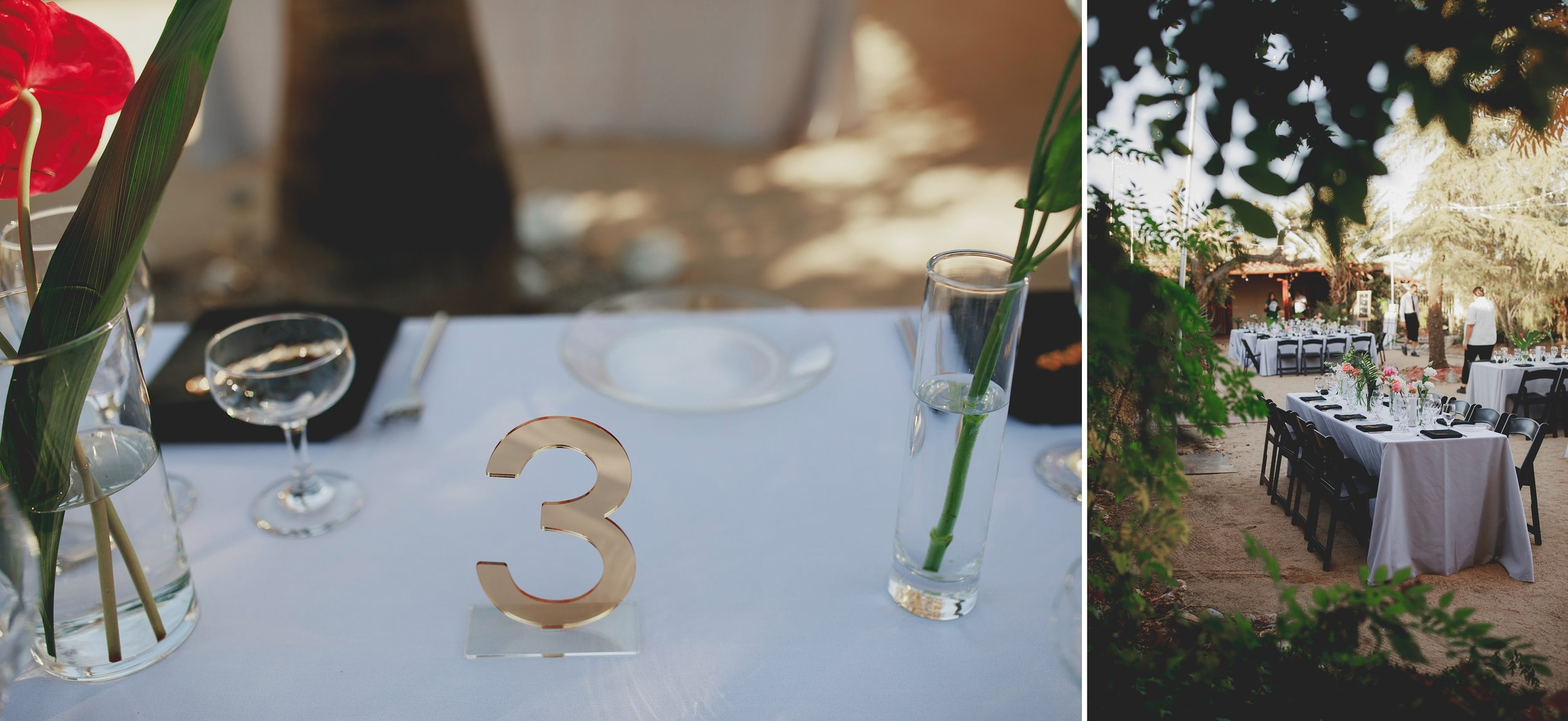 amanda_vanvels_joshua_tree_inn_wedding_111.jpg