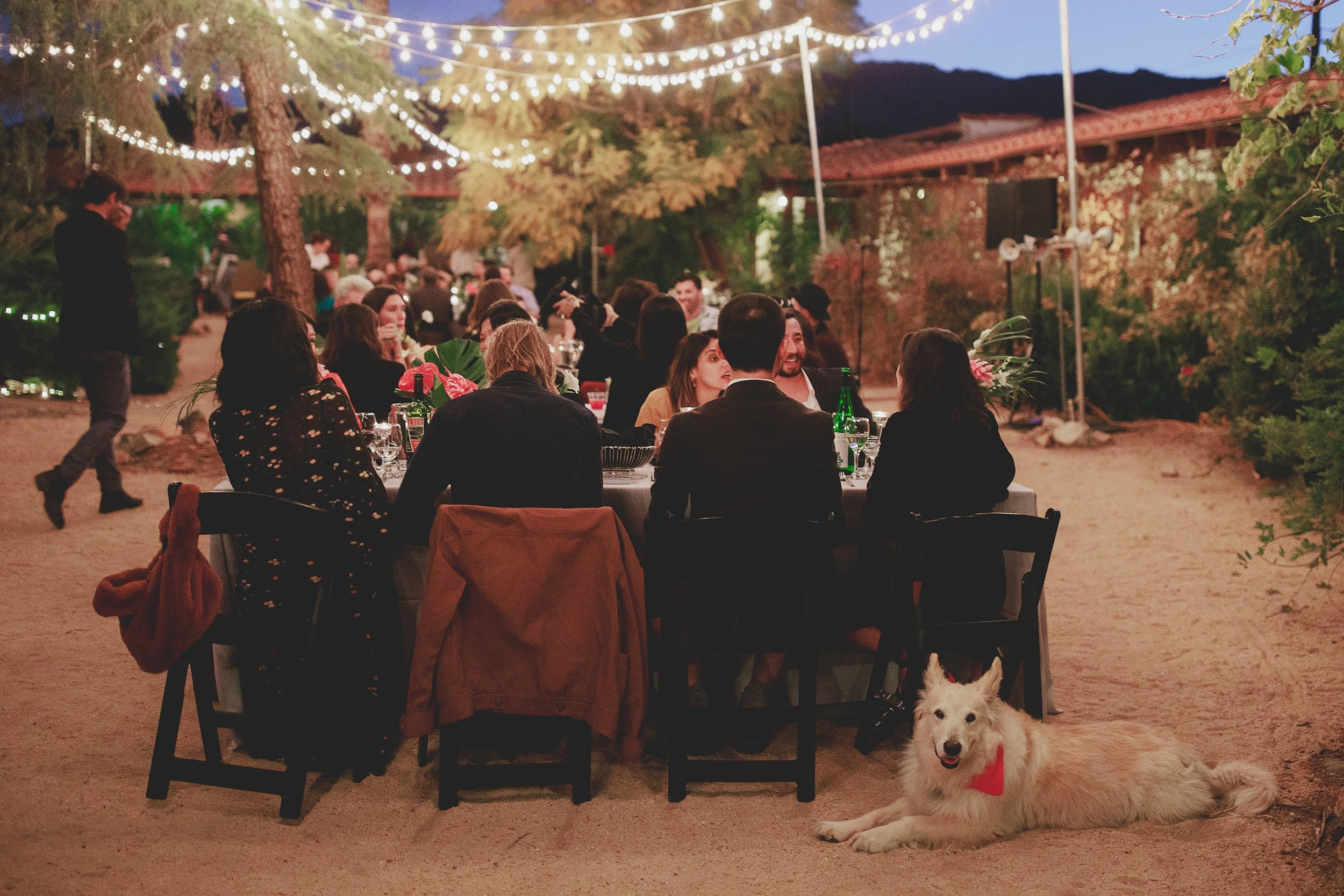 amanda_vanvels_joshua_tree_inn_wedding_164.jpg