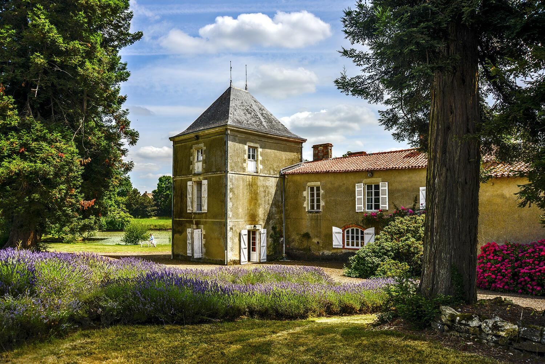 chateau1_0297.jpg