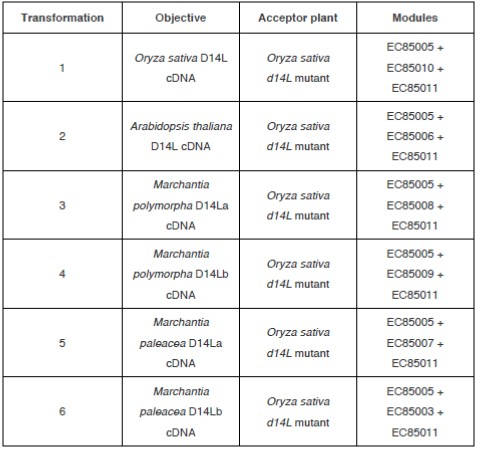 Table 2. Summary of transformations and golden gate modules used in each case.