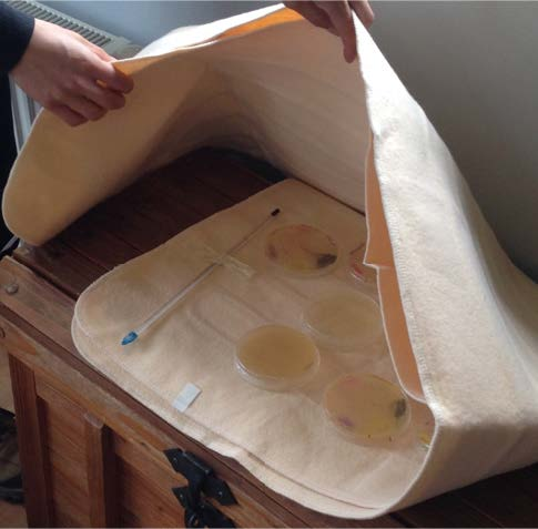 Fig. 3: low cost setups for growing bacterial plates. Bed-heating device (USD 20).