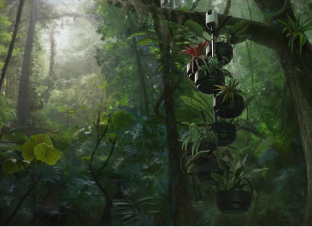 An artistic representation of a plant-microbial fuel cell, submitted in Paolo Bombelli's proposal