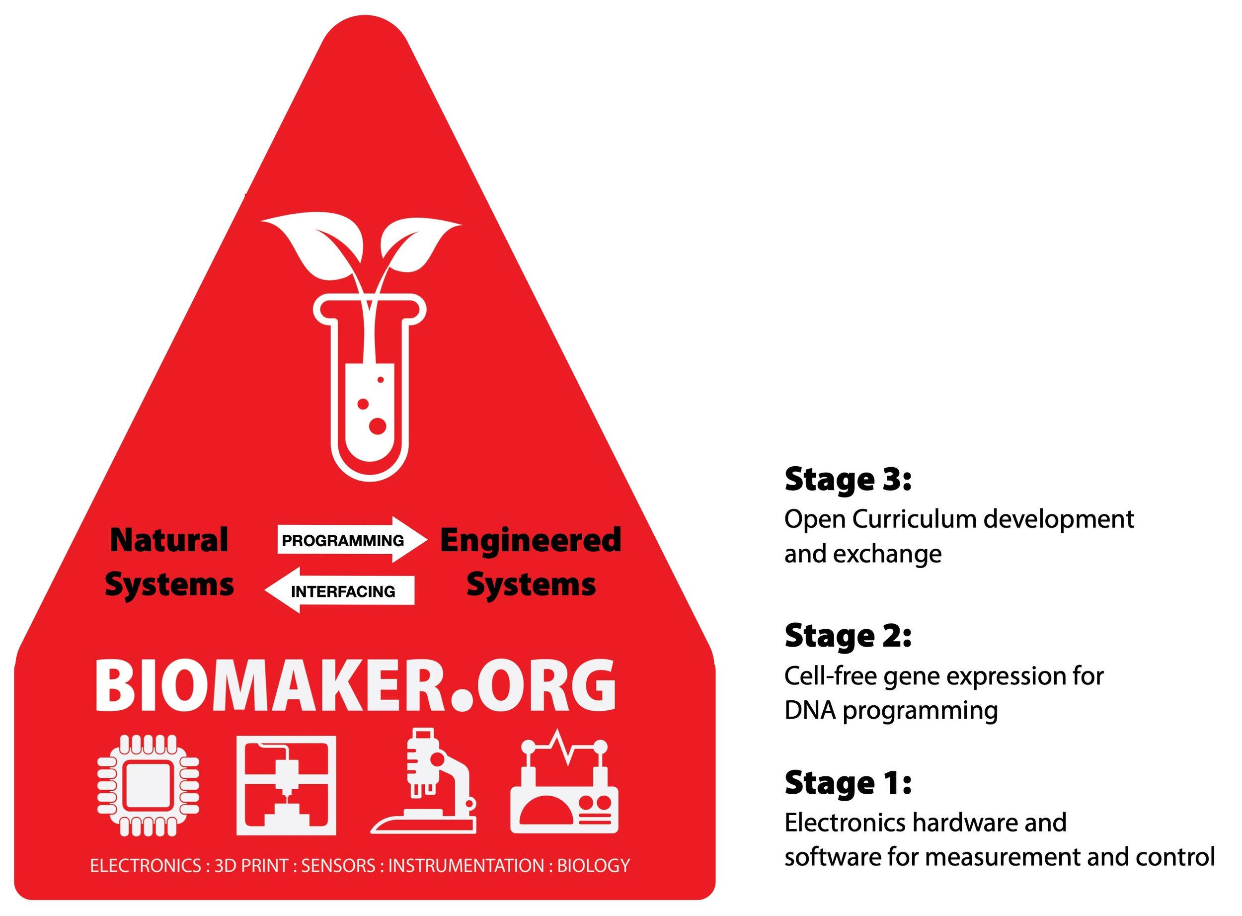 BiomakerOrg_diag1.jpg