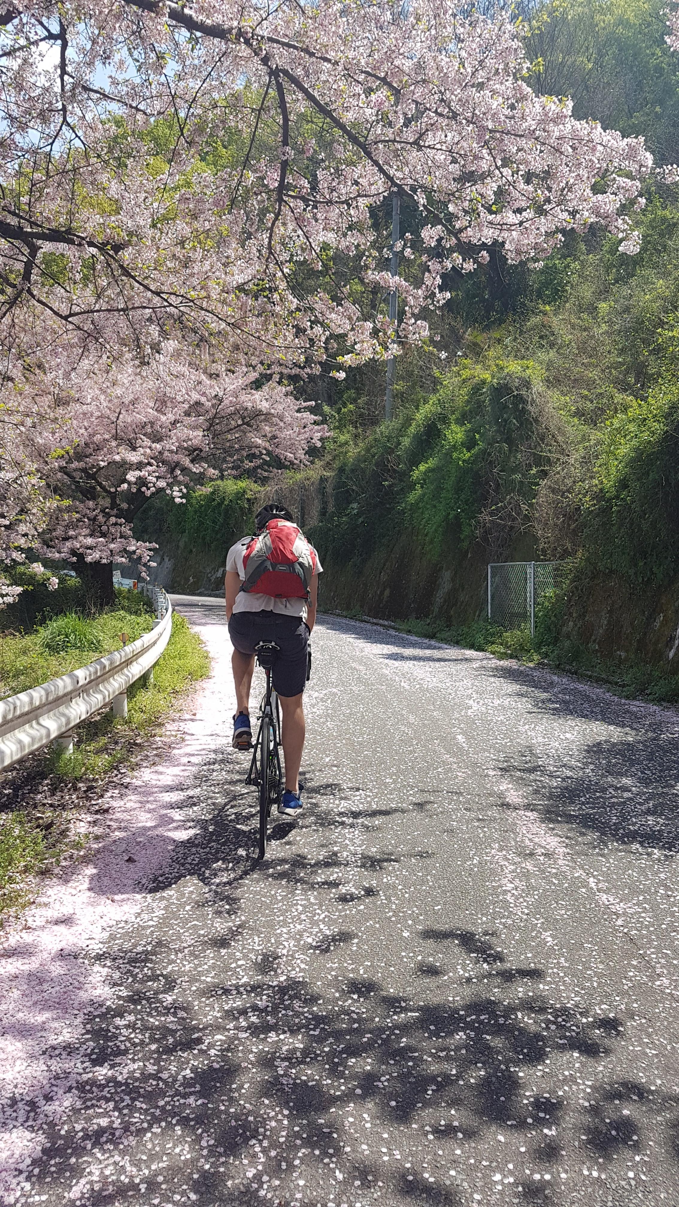 Shimanami Kaido, Japan