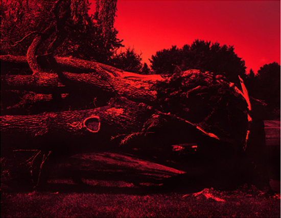 After the Storm (Diptych), 2007