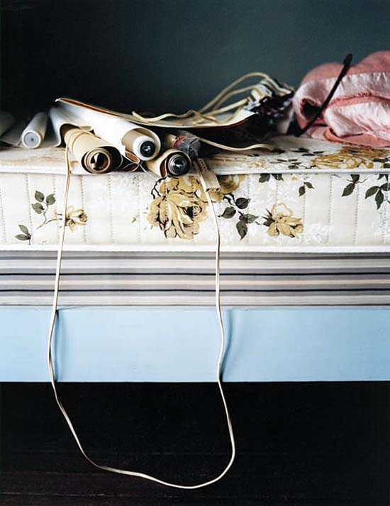 Roses and Cables, 2007
