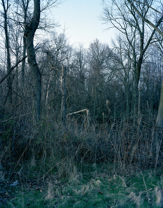 Lost in the Ozone, Broken and Alone, 2009