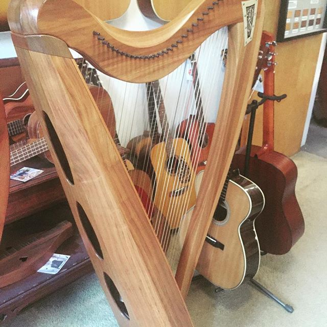 Consider gifting music to love ones this holiday season 🎼🎻 whether it's their 1st instrument or finding a rare piece, we can help here in downtown Amherst 🎼 . . . . #shoplocal #amherstma #westernma #givemusic #giveart #harp #harpstrings #musiccollector