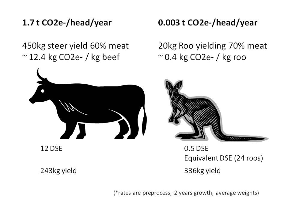 Extreme differences between two meat sources.  Dry Sheep Equivalent ( DSE ) is a standard unit used to compare different classes of stock. Image sourced from  Wikimedia Commons . For further information, see  Wilson and Edwards (2008 ).