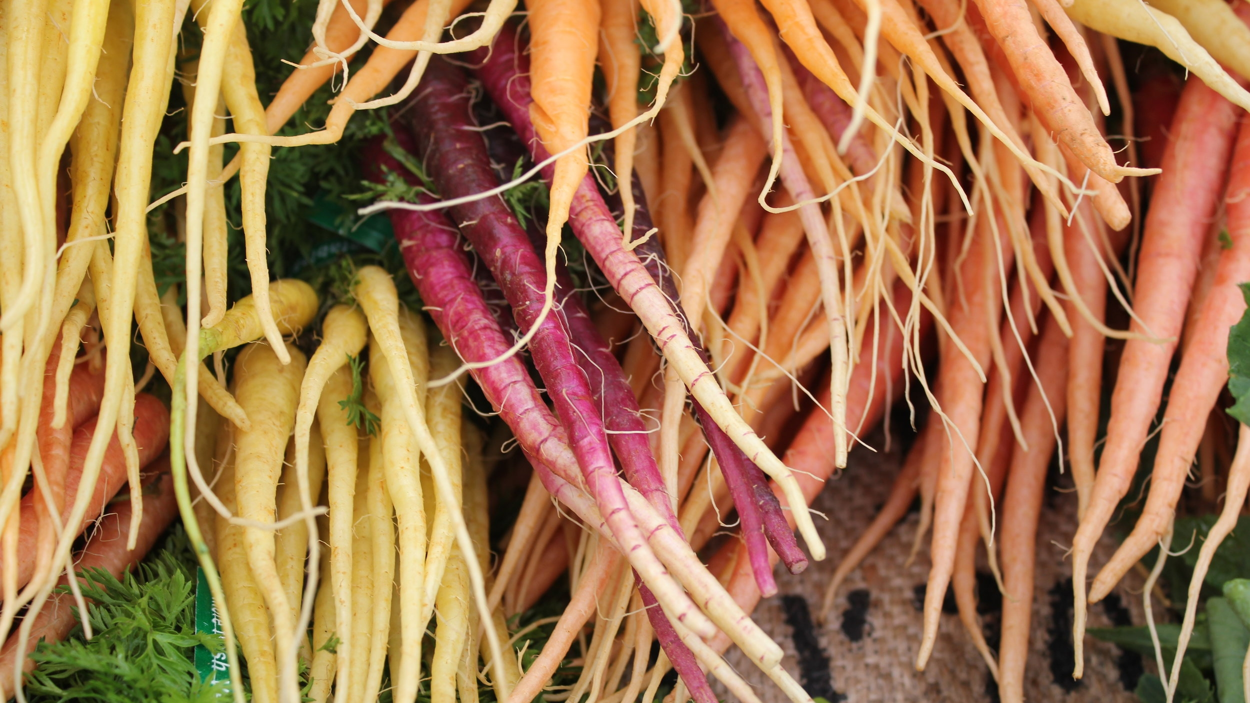 Weiser Fram Carrots