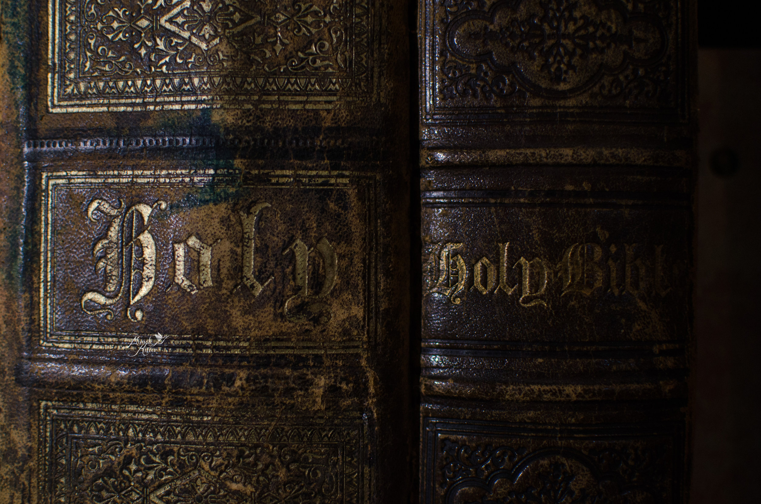Holy Bible, texture, rough light
