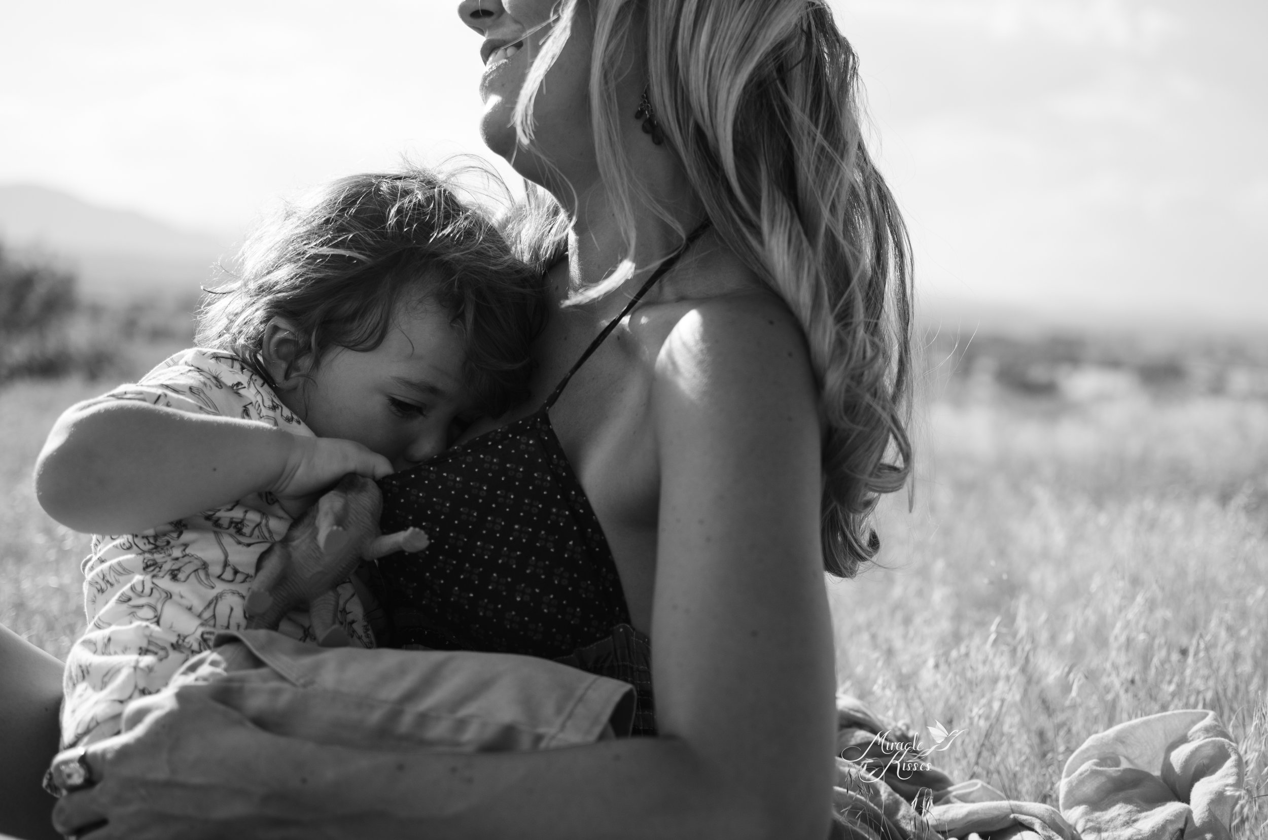 My boobies, nursing a toddler, breastfeeding support