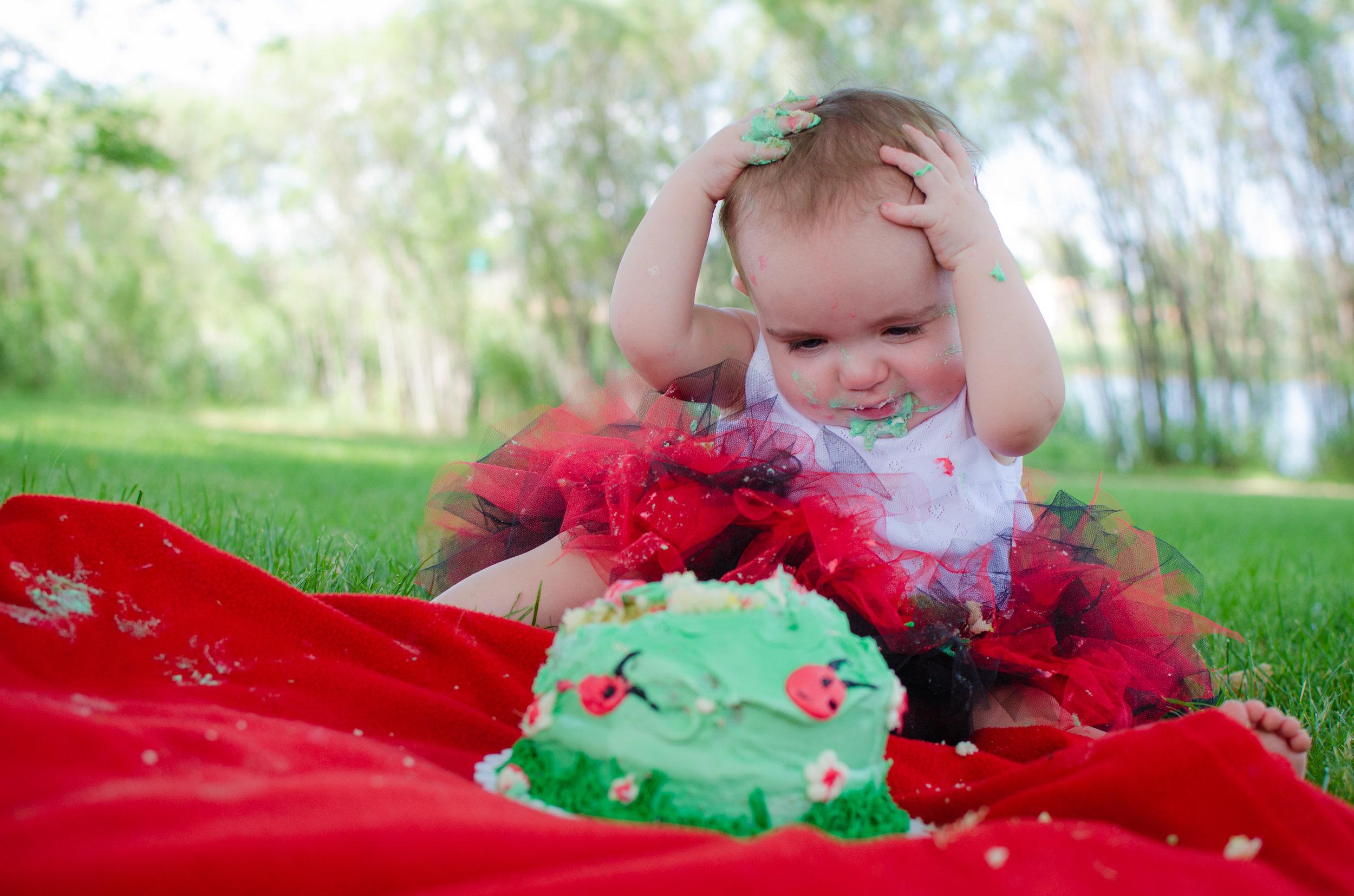 Happy birthday ladybug-66.jpg