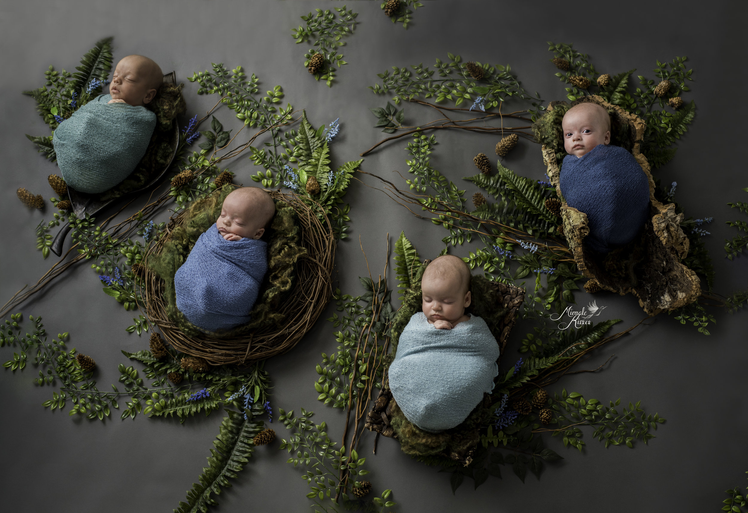 colorado newborn photographer, posed newborn, quadruplets, custom portraiture