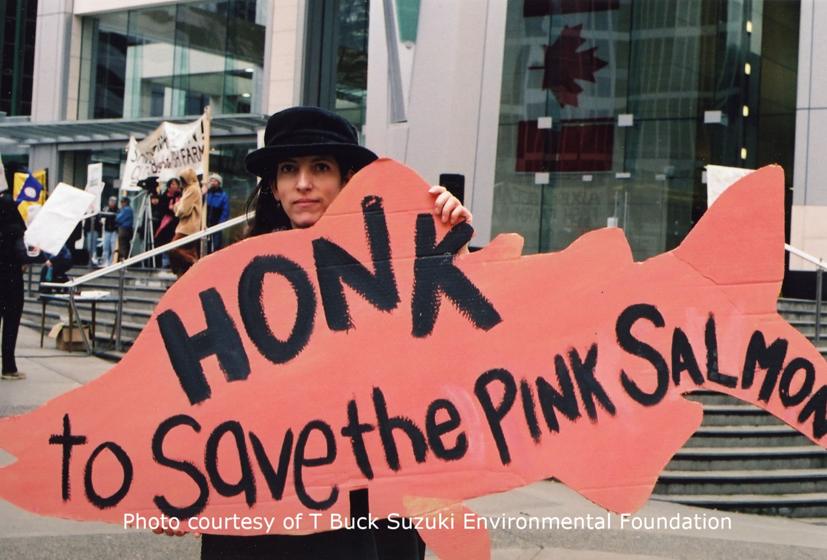 take action - save the pinks.jpg