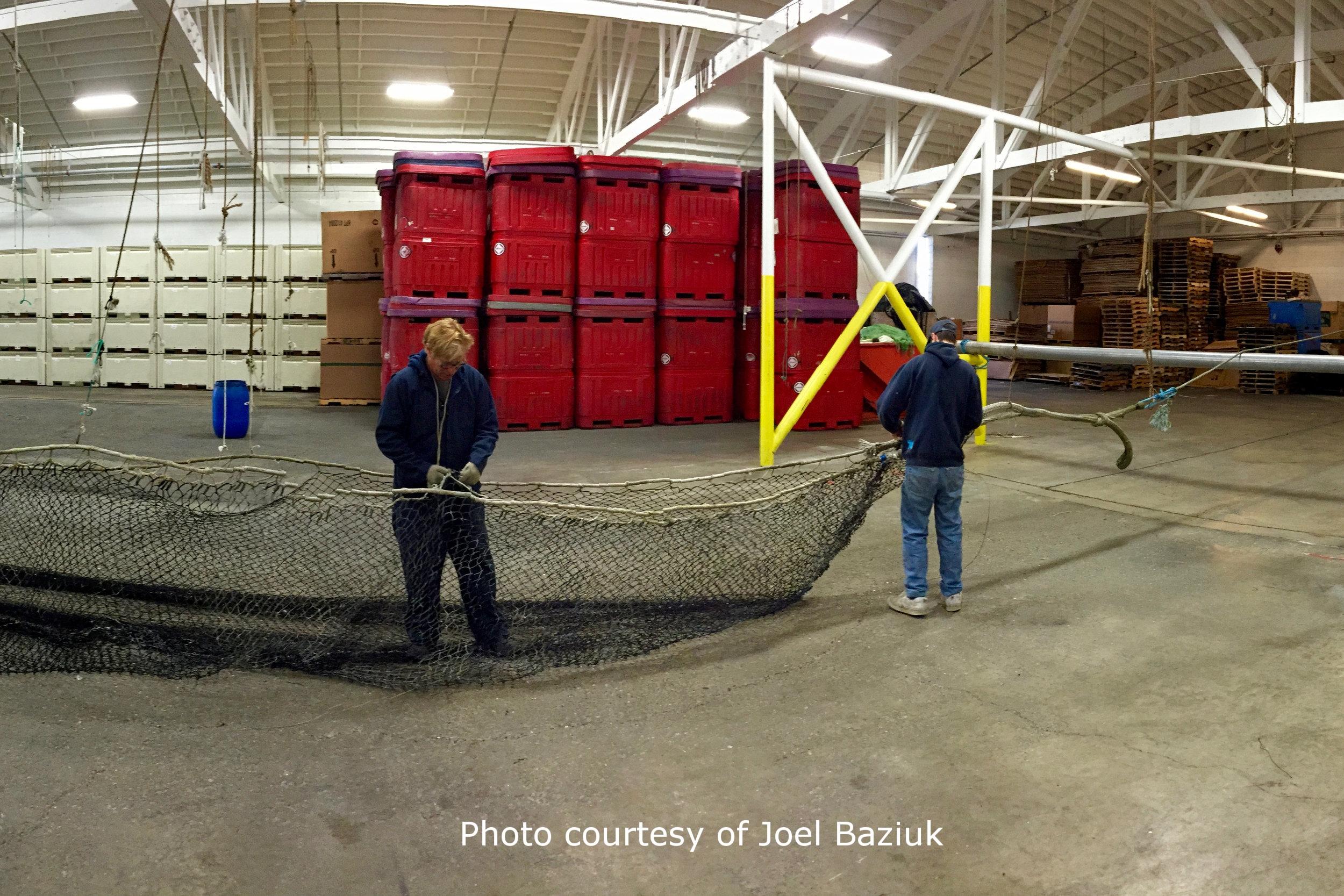 Steveston Harbour Net Recycling - 21.jpg