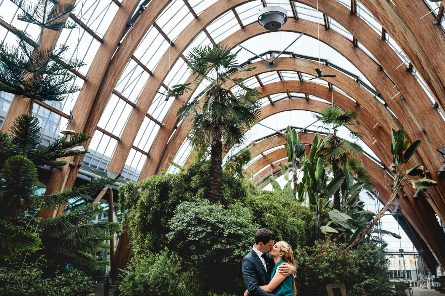 Couple kissing in the distance with lots of foliage around them and the roof of Millennium Galleries winter garden | Alternative Wedding Photography in Sheffield