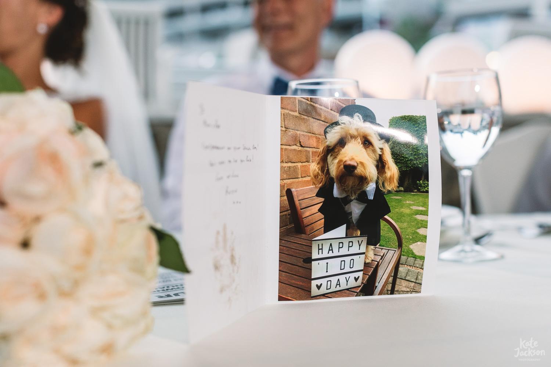 Dog at fun wedding at Kassandra Bay Resorts
