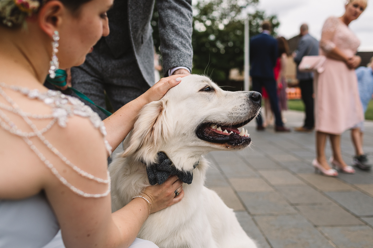 Bride with alternative shoulder necklace patting dog with a tarten bow tie at dog friendly wedding in Shropshire