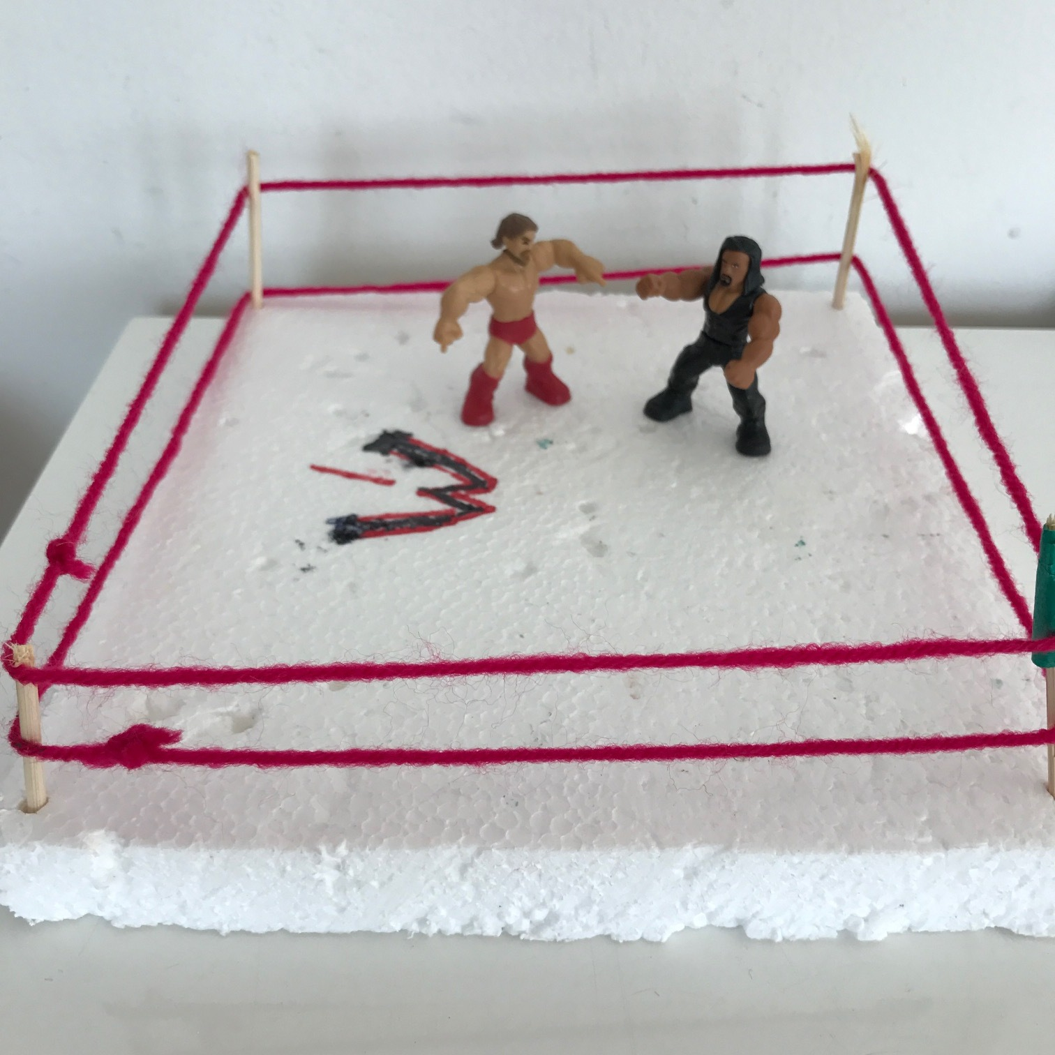 A ring for their wrestlers.