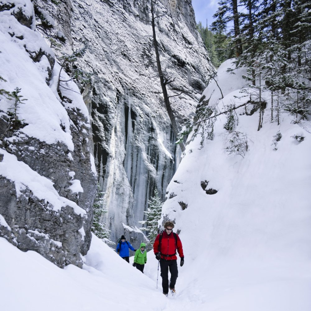 Grotto Canyon Ice Walk.jpg