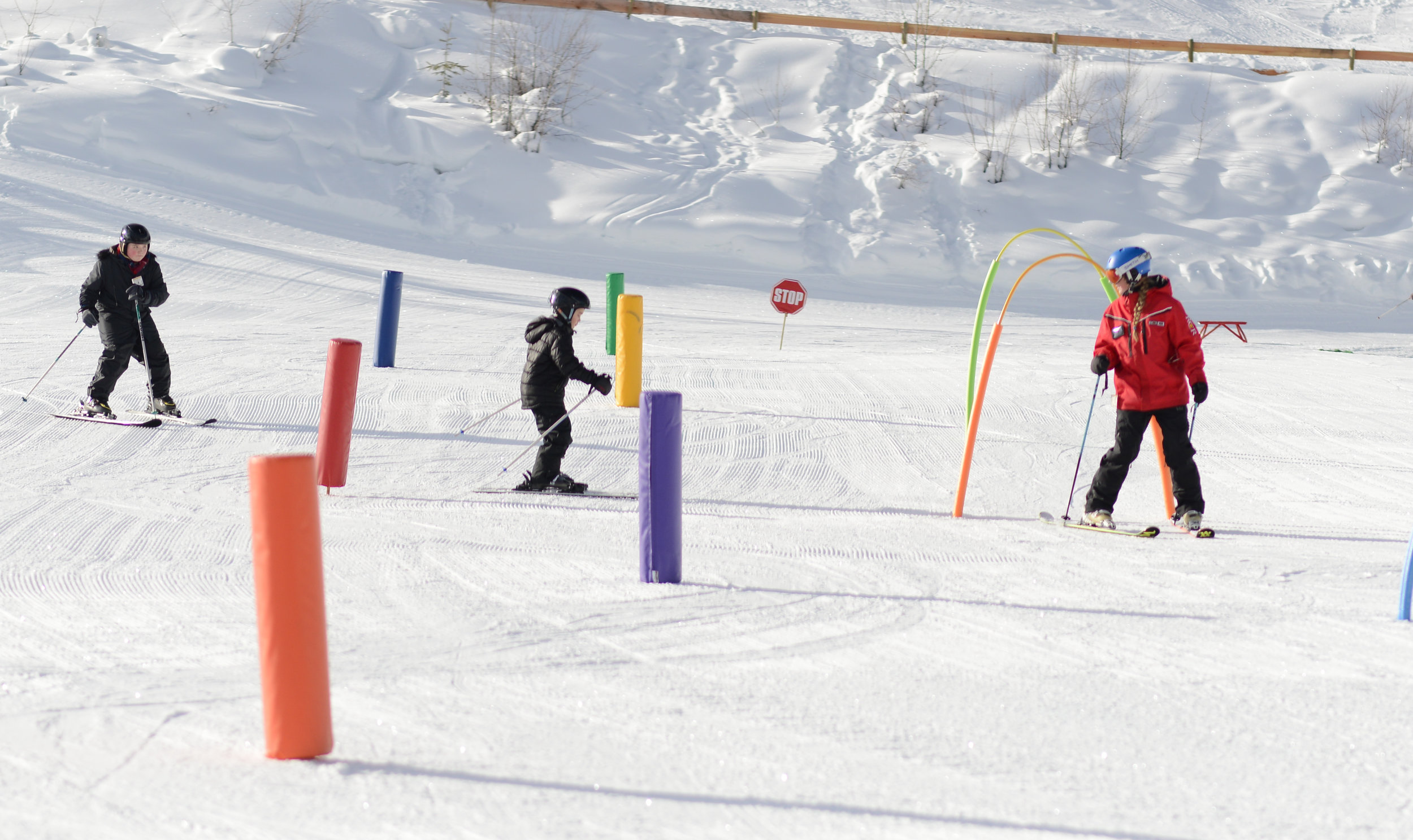 SKI-LESSONS-KICKING-HORSE-MOUNTAIN