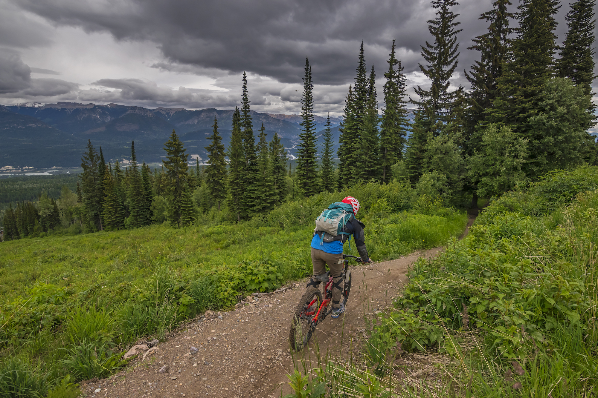 mountain-biking-kicking-horse
