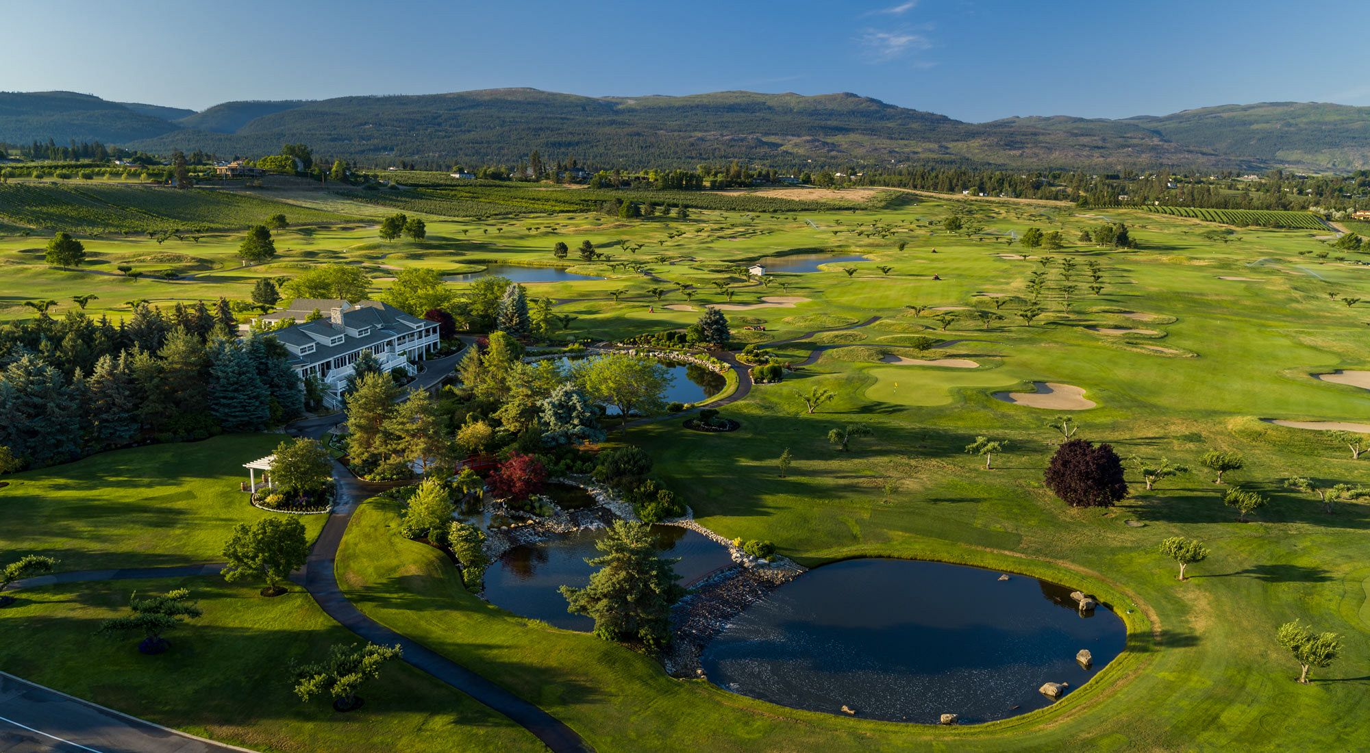Tee up at The Harvest Golf Club -