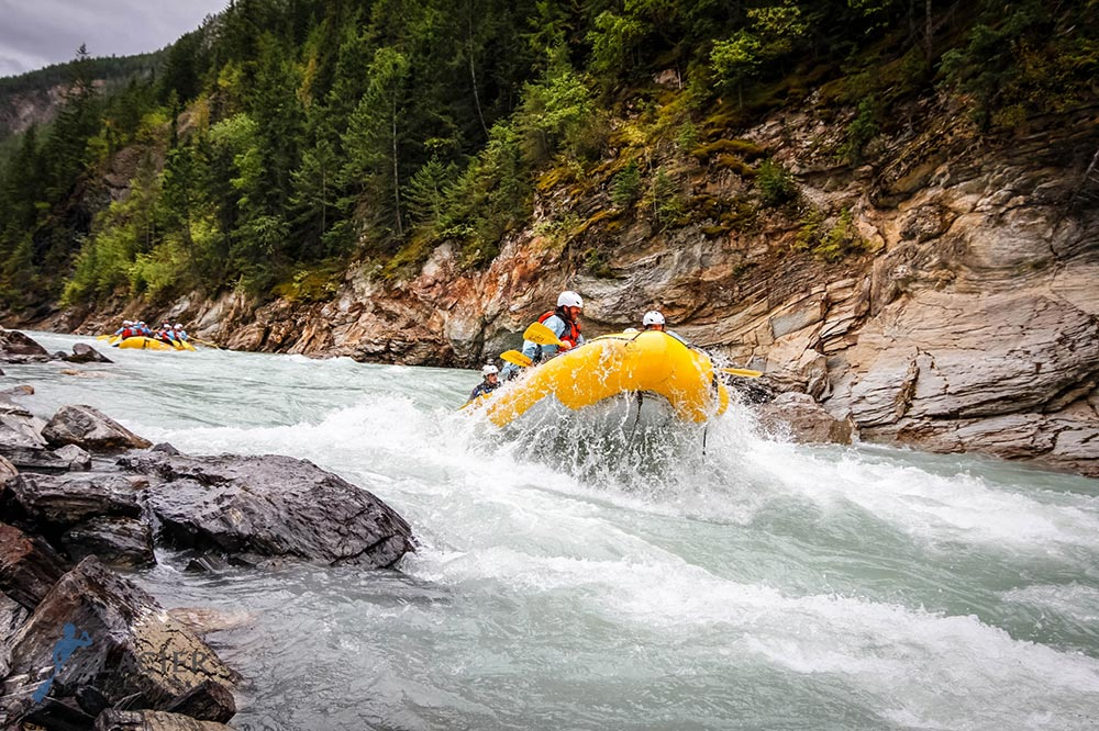 Tackle epic whitewater on the Kicking Horse River -