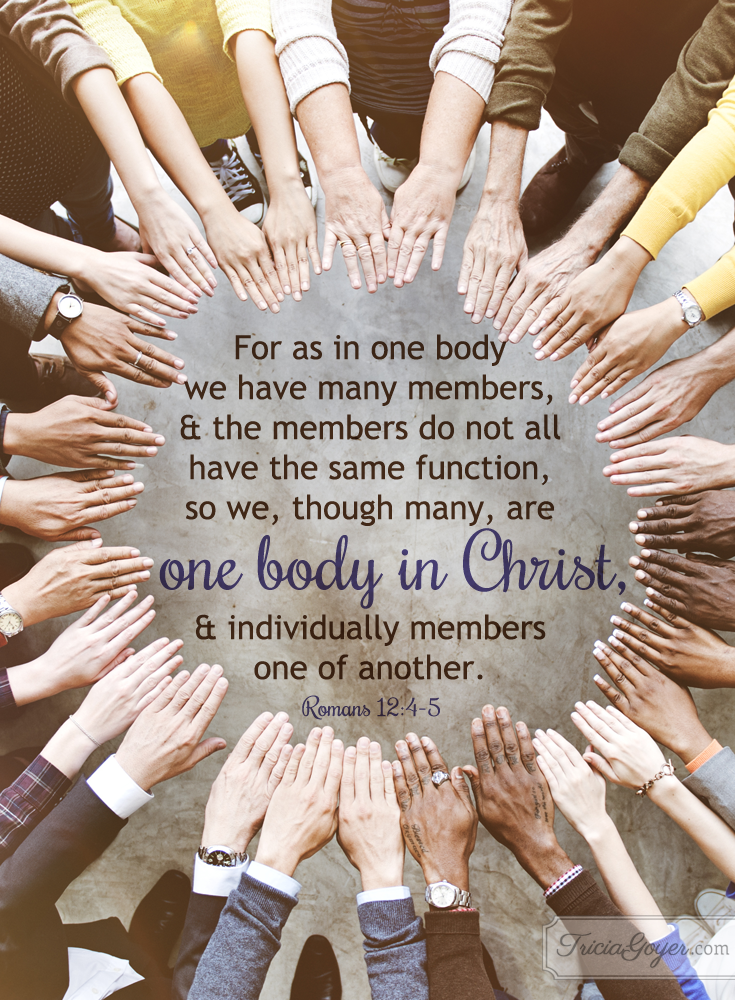 One-body-in-Christ-Romans-4-copy.png