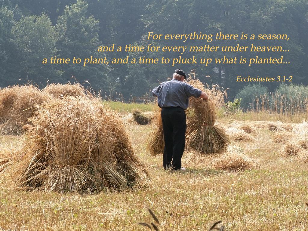 ecclesiastes3_1-2b.jpg
