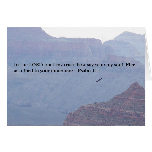 psalm_11_1_bible_verse_in_the_lord_i_trust_card-ra7f59470285f40afb7410d59fba46173_xvuak_8byvr_512.jpg