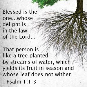 psalm-1-1-3-300x300.jpg