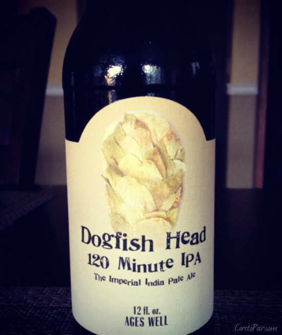 Dogfish Head 120 | CaretoPair.com
