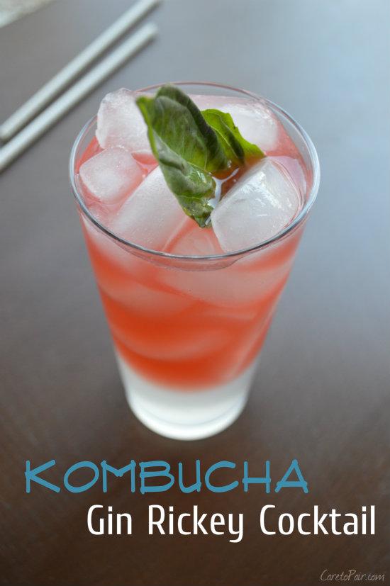 Kombucha Cocktail on CaretoPair.com