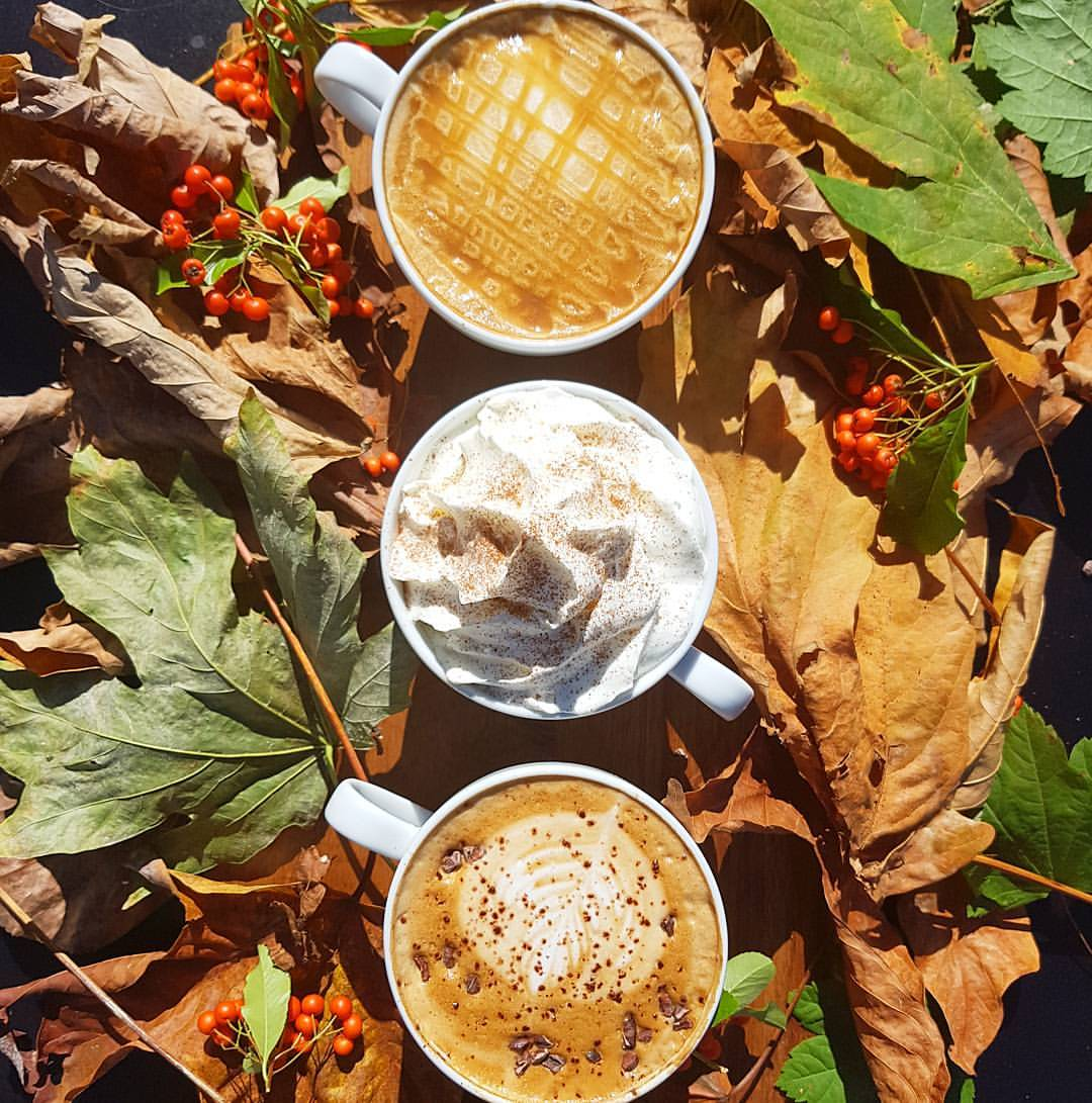 Pumpkin Spice, Salted Caramel, Spiced Chocolate