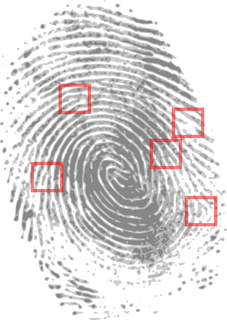 fingerprint-146242_1280.png