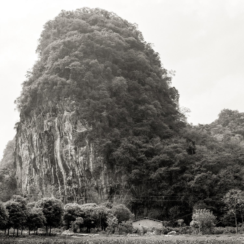 Home, China, 2018