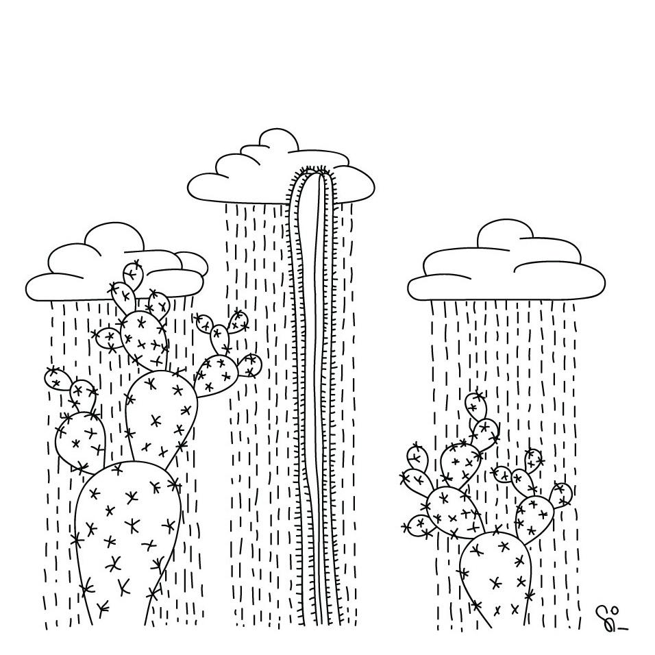 cactus+illustrations.jpg