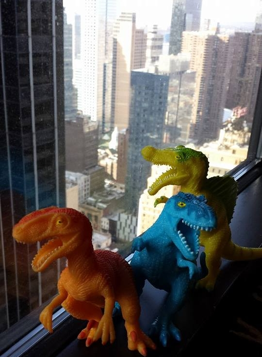 Lizards in NYC.jpg