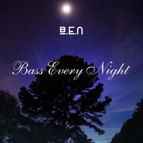 Bass Every Night (2016)
