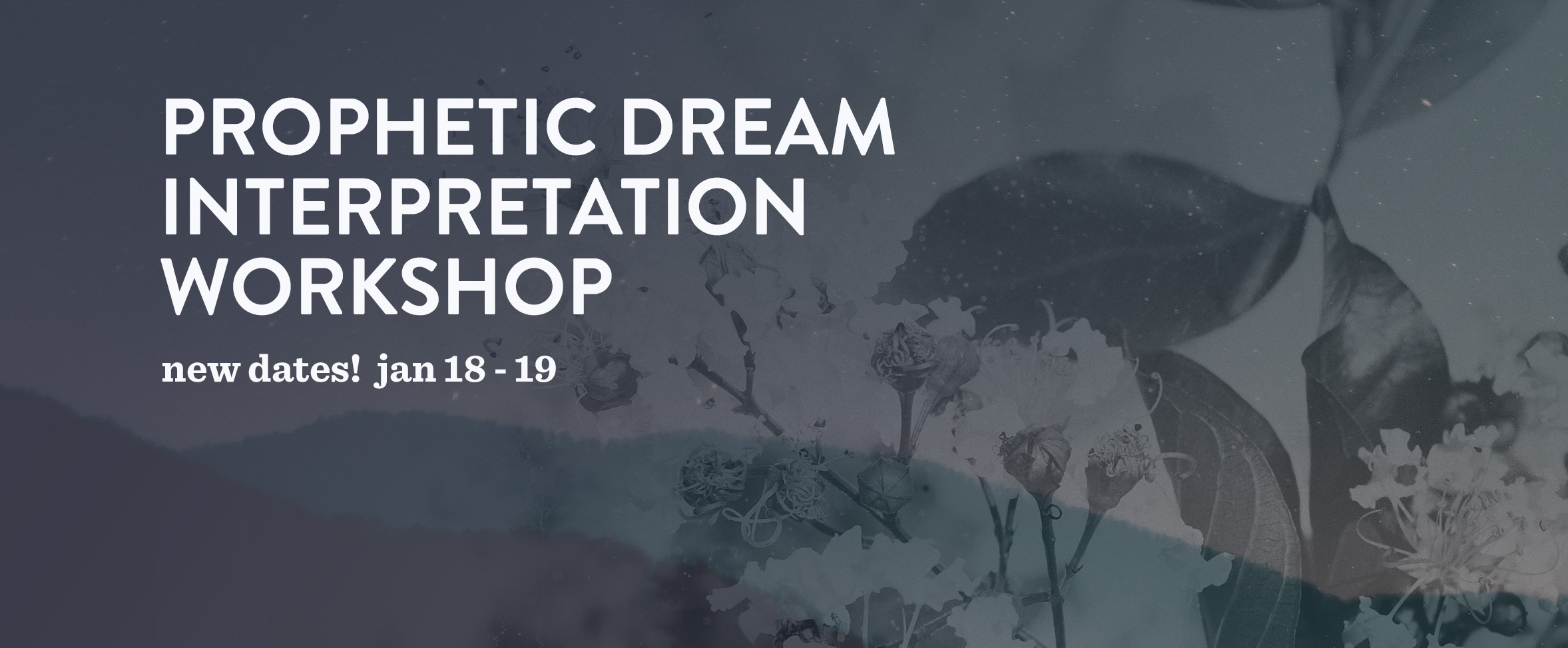 dream interpretation 2018 banner 2.3.jpg