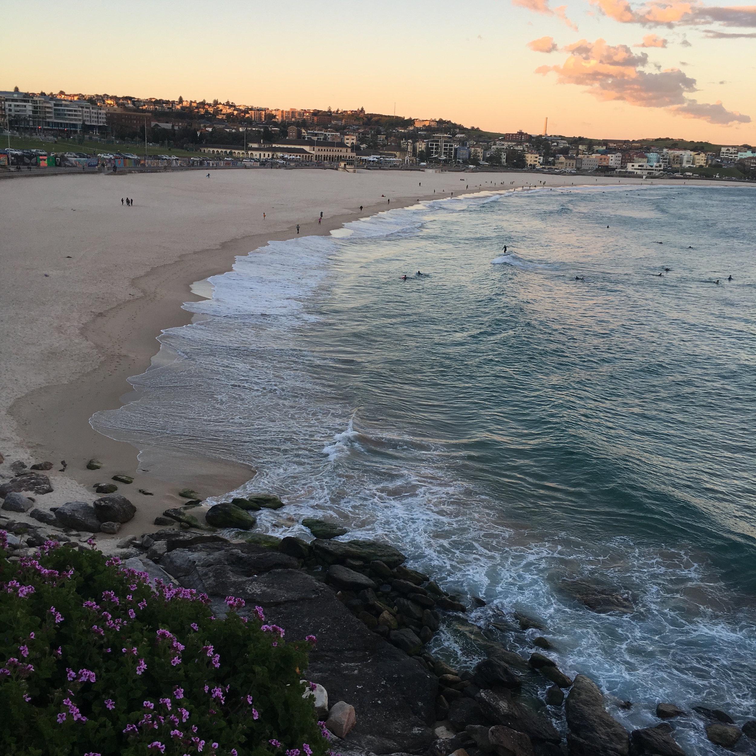 bondi beach sunset.JPG