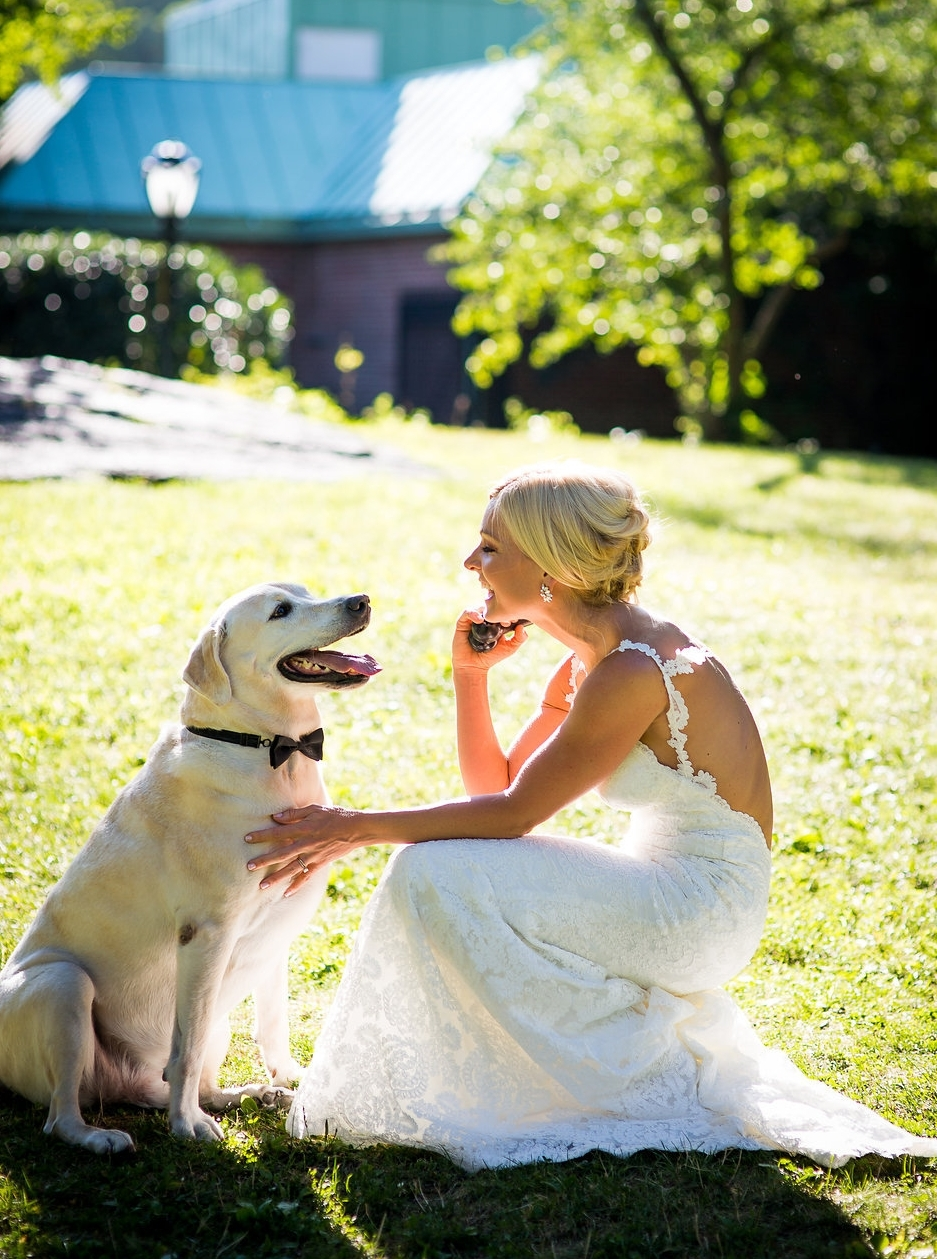 Sir Baxter Bear Having a Moment with Mama Anna Kooiman on Wedding Day