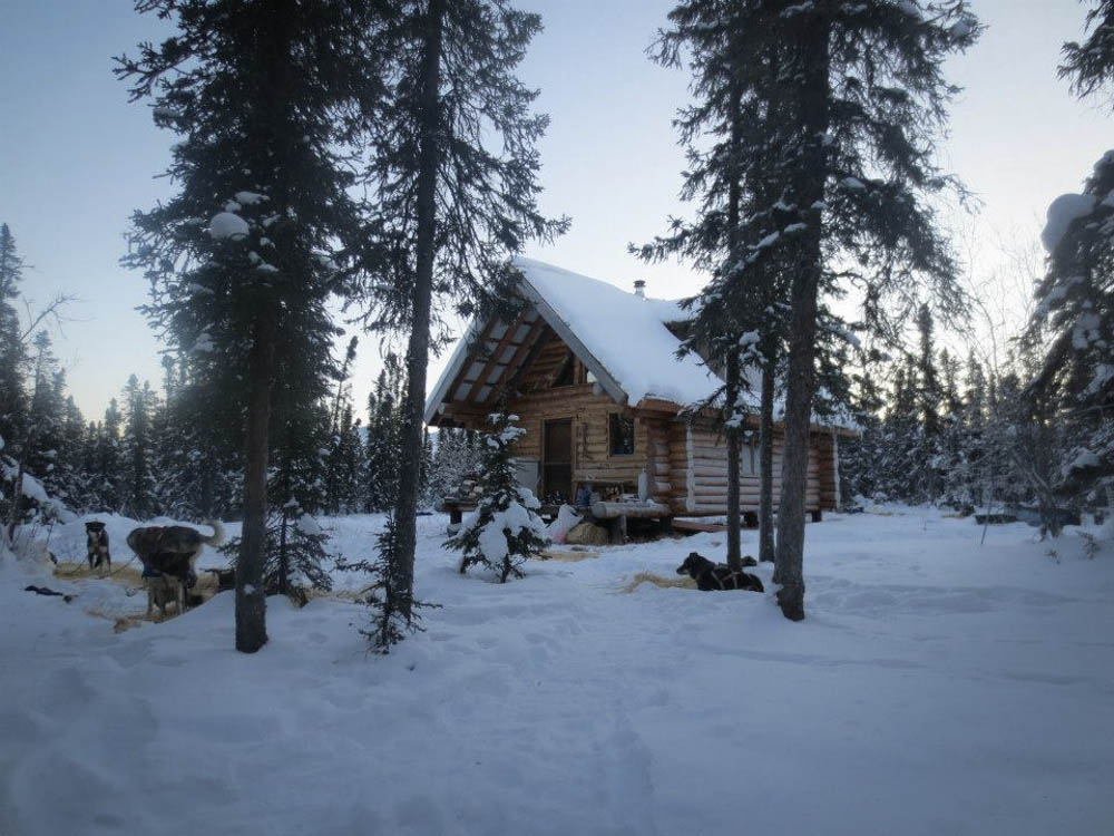Our cabin in use as a musher checkpoint on a training run.