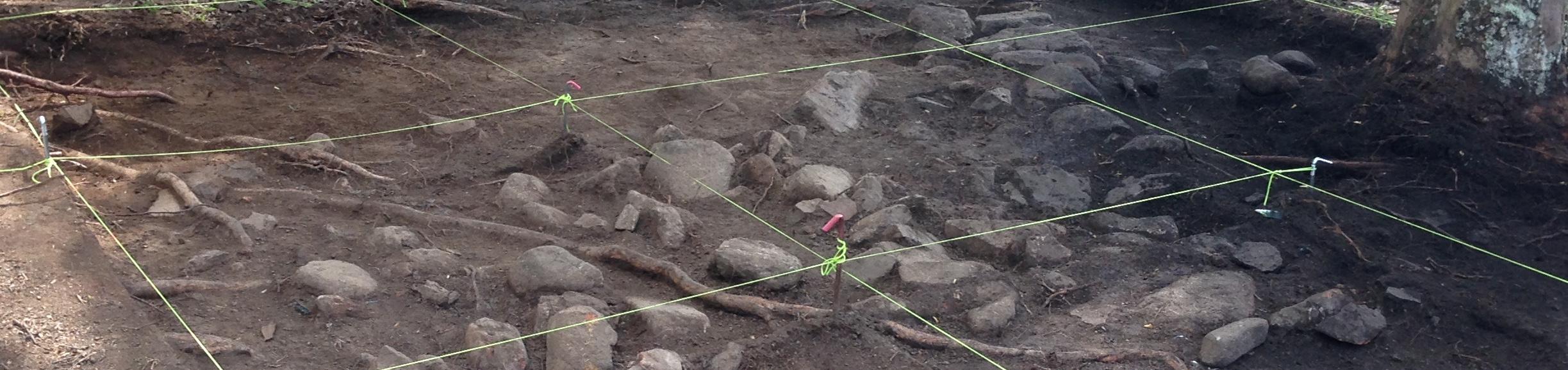 Site grid, Atherton Chinatown excavation, Queensland, in 2015 (photo: Melissa Dunk)