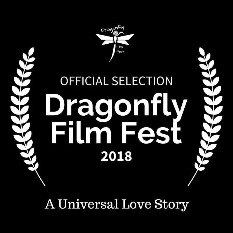 dragonflyfilmfest.jpg