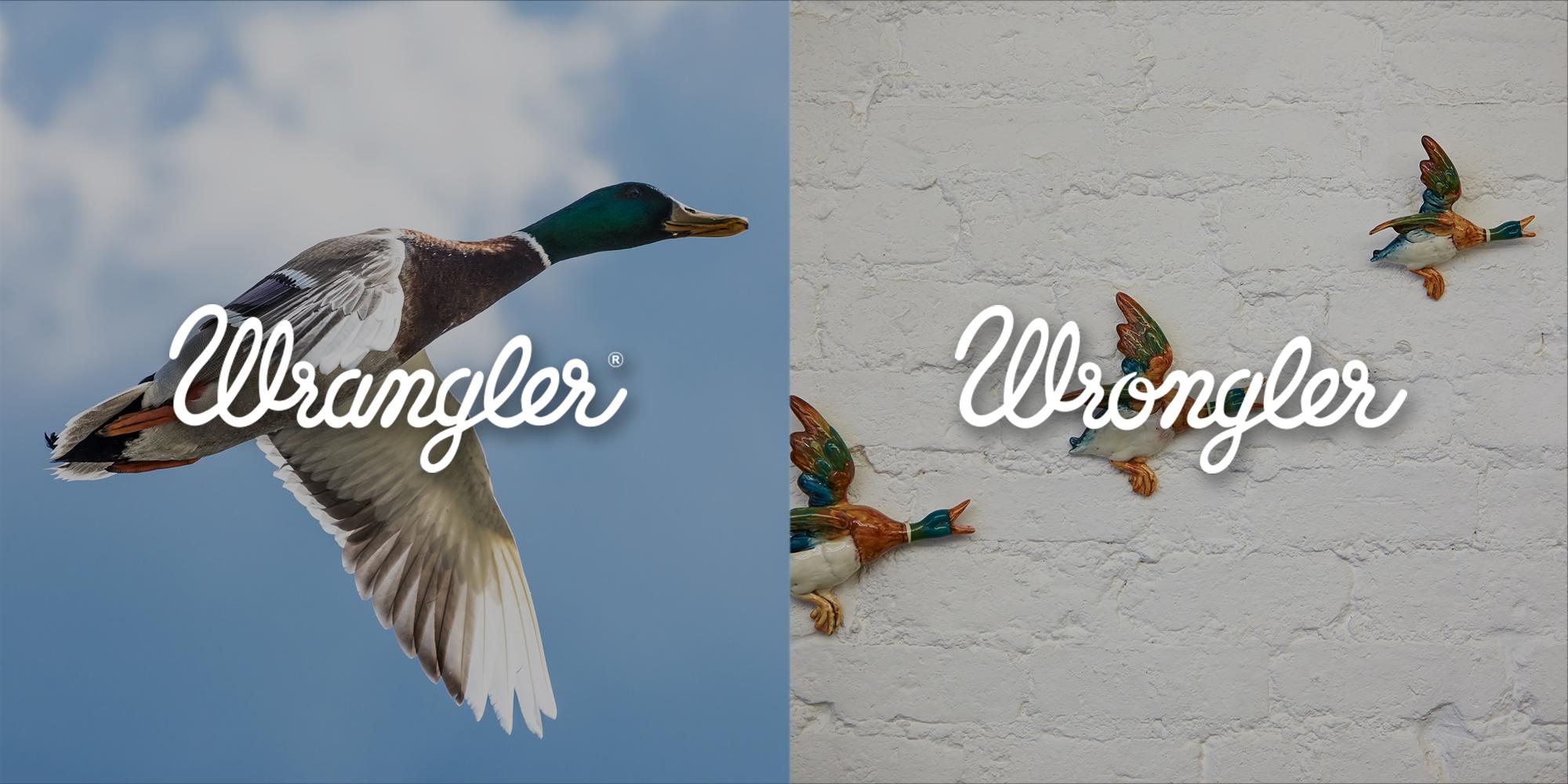 WRANGLER_WRONGLER__0011_3.jpg