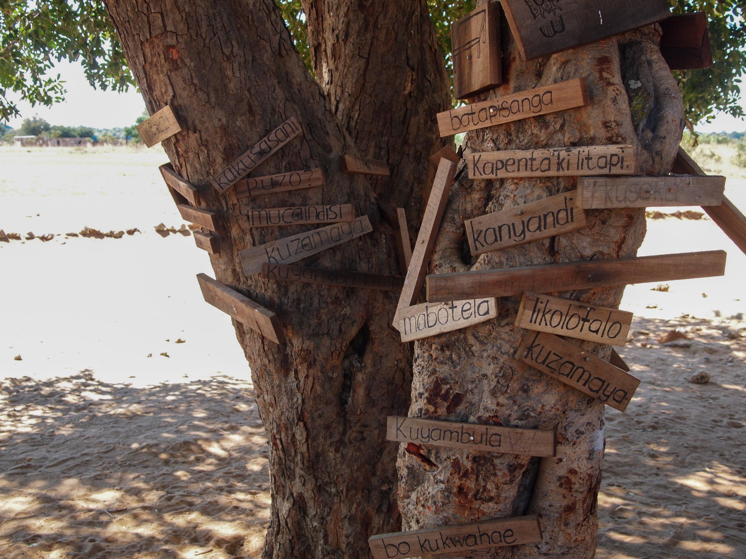 the word tree a new  idea