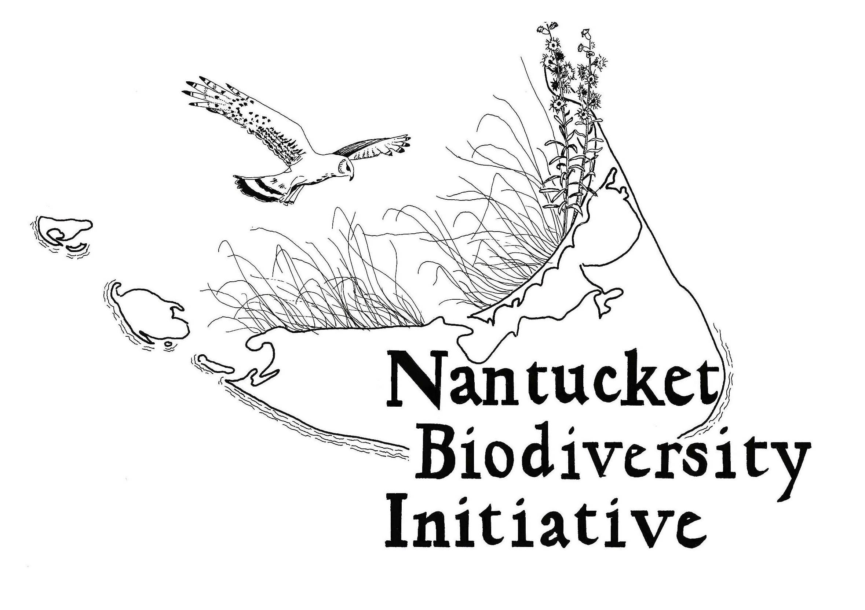 Nantucket Biodiversity Initiative Logo with white border.jpg